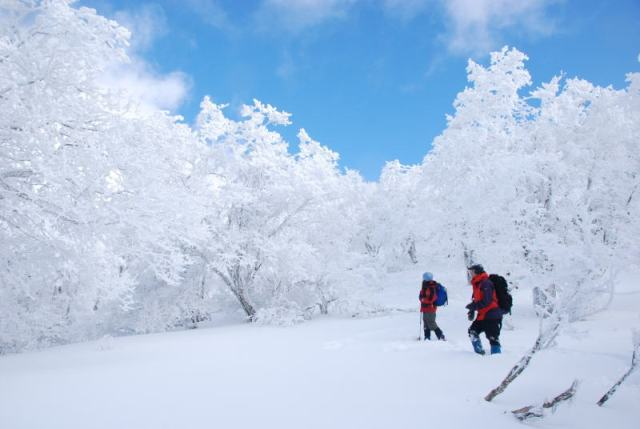 No 41 写真「御池岳 樹氷」