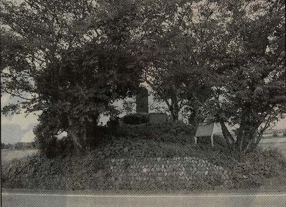 石碑が立つ木造城址(写真:毎日新聞社)
