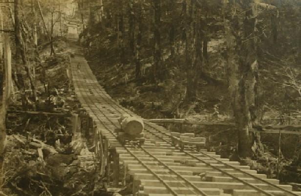 木材搬出用に敷設された軌道(王子特殊紙株式会社芝川製造所 所蔵)