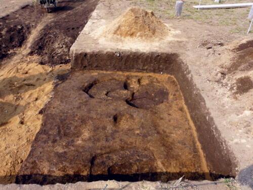 143次調査で確認された柱穴が姿を現しました。