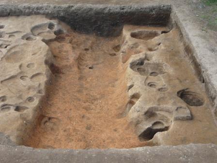 見つかった溝と掘立柱建物(東から撮影)